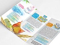 Booklet-FrutoNyanya_pr
